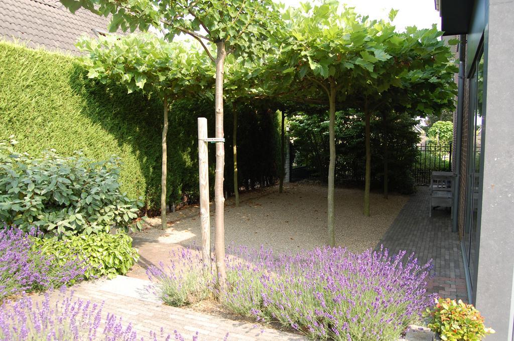 Rob van der linden tuinadvies ontwerpvoorbeelden for Huis in de tuin