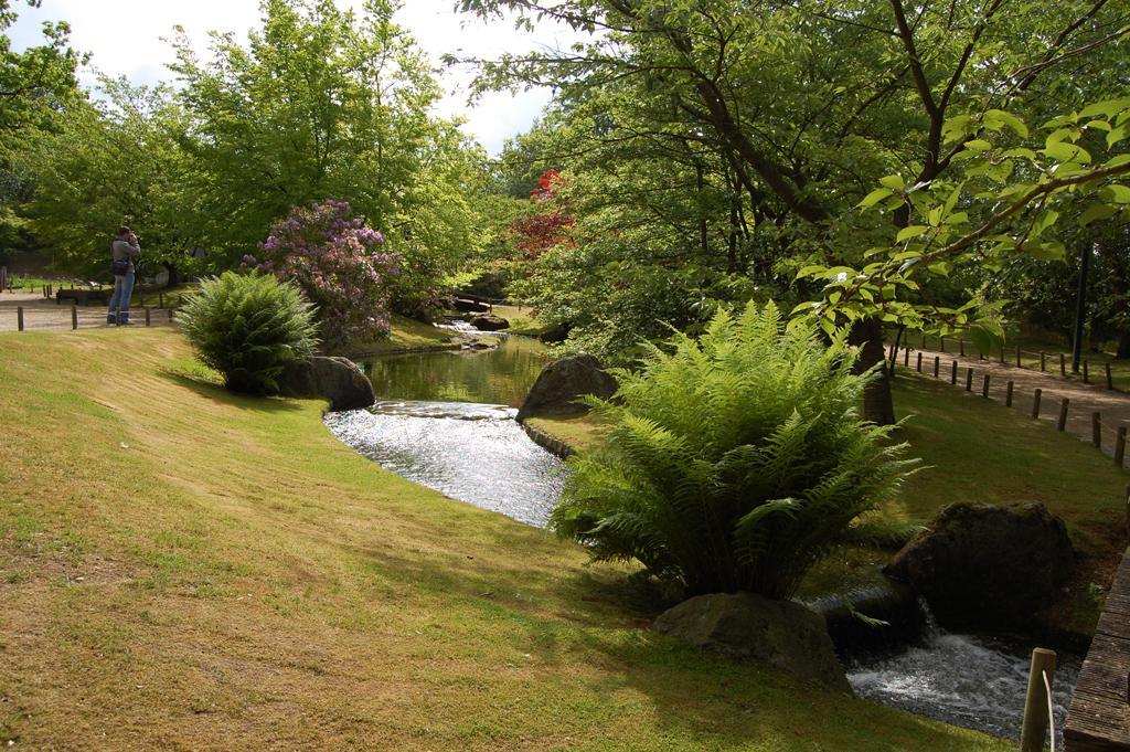 Heuvelachtig Tuin Ontwerp : Rob van der linden tuinadvies augustus